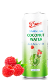 Sparkling Coconut Water Raspberry JUICE